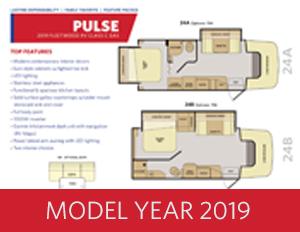 2019 Pulse brochure thumb